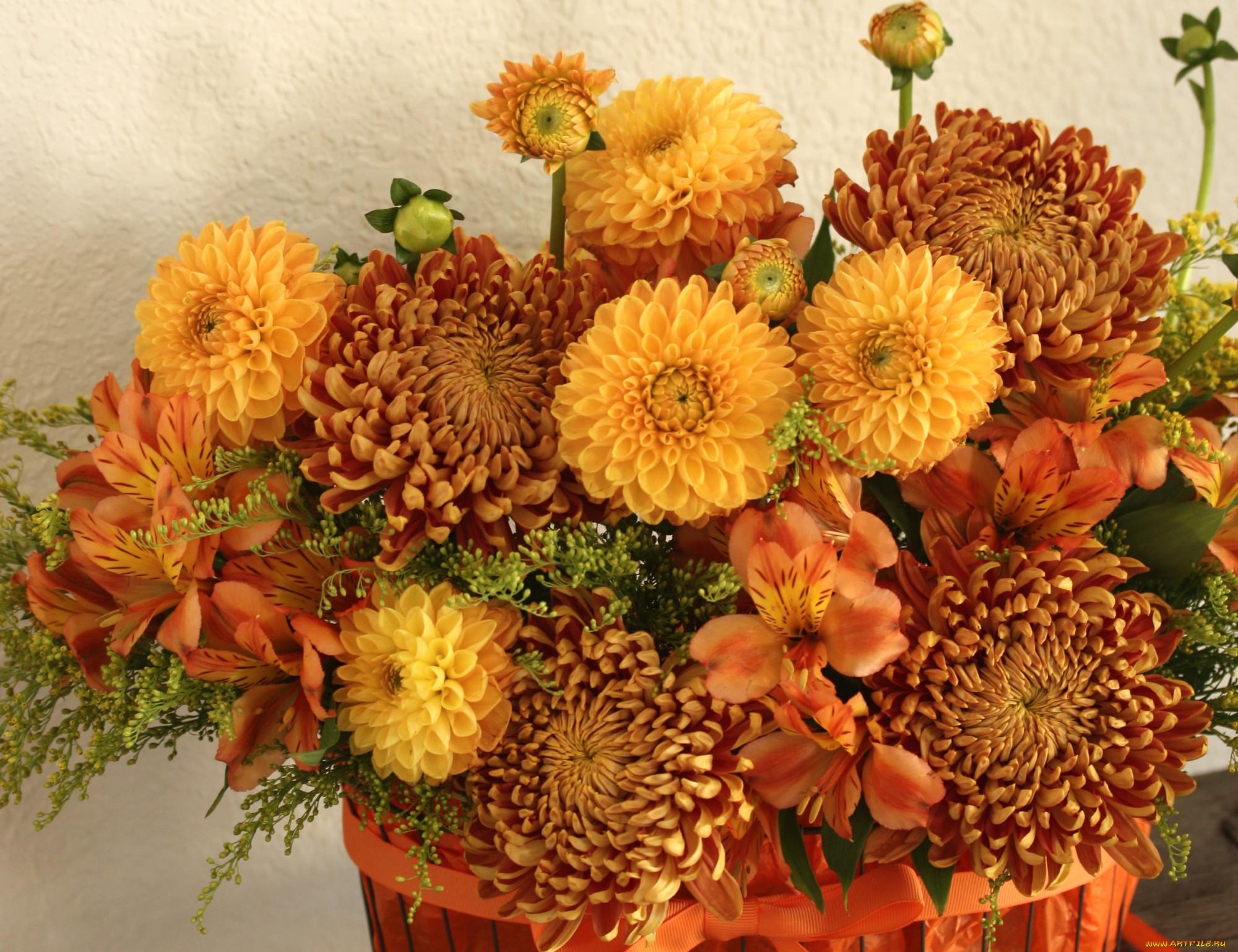 Осенние цветы букеты фото